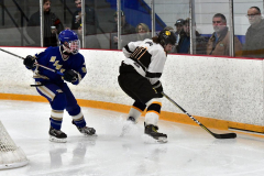 CIACT Ice Hockey D3 QFs; #1 Hand 5 vs. #8 Newtown 0 - Photo # 1023