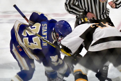 CIACT Ice Hockey D3 QFs; #1 Hand 5 vs. #8 Newtown 0 - Photo # 1109