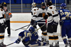 CIACT Ice Hockey D3 QFs; #1 Hand 5 vs. #8 Newtown 0 - Photo # 800