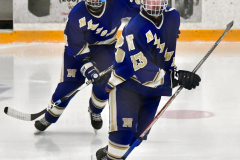 CIACT Ice Hockey D3 QFs; #1 Hand 5 vs. #8 Newtown 0 - Photo # 862