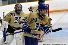 CIACT D3 Ice Hockey; #8 Newtown 7 vs. #9 Wilton 2 - Photo # 031
