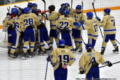 CIACT D3 Ice Hockey; #8 Newtown 7 vs. #9 Wilton 2 - Photo # 2218