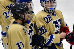 CIACT D3 Ice Hockey; #8 Newtown 7 vs. #9 Wilton 2 - Photo # 2232