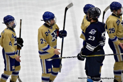 CIACT D3 Ice Hockey; #8 Newtown 7 vs. #9 Wilton 2 - Photo # 2258