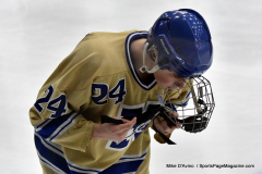 CIACT D3 Ice Hockey; #8 Newtown 7 vs. #9 Wilton 2 - Photo # 553