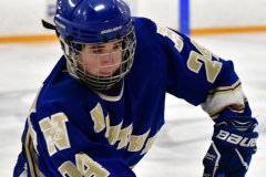 CIACT Ice Hockey D3 QFs; #1 Hand 5 vs. #8 Newtown 0 - Photo # 192