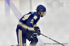 CIACT Ice Hockey D3 QFs; #1 Hand 5 vs. #8 Newtown 0 - Photo # 851