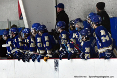 Gallery CIAC Ice Hockey; Northeastern 4 vs. Newtown 3 - Photo # 610
