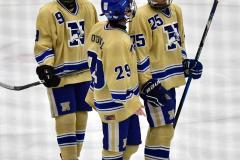 CIAC Ice Hockey; Focused on Newtown 7 vs. Mt. Everett 1 - Photo 1064