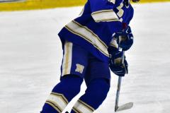 CIAC Ice Hockey; L.H.- H-K, Cogin. 8 vs Newtown 1 - Photo # (865)