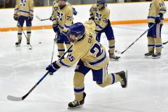 CIAC Ice Hockey; Newtown 2 vs. Daniel Hand 6 - Photo # 103