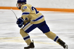 CIAC Ice Hockey; Newtown 2 vs. Daniel Hand 6 - Photo # 1169