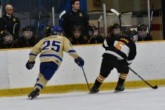 CIAC Ice Hockey; Newtown 2 vs. Daniel Hand 6 - Photo # 1309