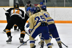 CIAC Ice Hockey; Newtown 2 vs. Daniel Hand 6 - Photo # 1438