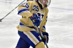 CIAC Ice Hockey; Newtown 2 vs. Daniel Hand 6 - Photo # 155