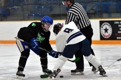 CIAC Ice Hockey; Newtown 4 vs. SH,LI,TH,NO 1 - Photo # (1040)