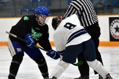 CIAC Ice Hockey; Newtown 4 vs. SH,LI,TH,NO 1 - Photo # (1041)