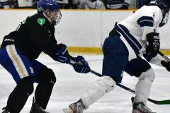 CIAC Ice Hockey; Newtown 4 vs. SH,LI,TH,NO 1 - Photo # (1043)