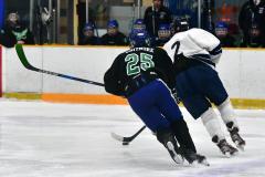 CIAC Ice Hockey; Newtown 4 vs. SH,LI,TH,NO 1 - Photo # (1044)