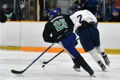 CIAC Ice Hockey; Newtown 4 vs. SH,LI,TH,NO 1 - Photo # (1045)