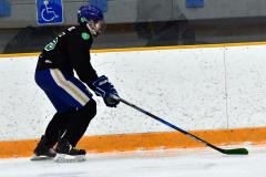 CIAC Ice Hockey; Newtown 4 vs. SH,LI,TH,NO 1 - Photo # (1061)