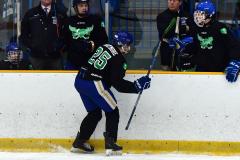 CIAC Ice Hockey; Newtown 4 vs. SH,LI,TH,NO 1 - Photo # (1072)