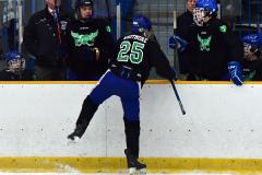 CIAC Ice Hockey; Newtown 4 vs. SH,LI,TH,NO 1 - Photo # (1073)