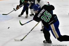 CIAC Ice Hockey; Newtown 4 vs. SH,LI,TH,NO 1 - Photo # (1207)