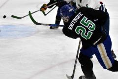 CIAC Ice Hockey; Newtown 4 vs. SH,LI,TH,NO 1 - Photo # (1208)