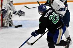 CIAC Ice Hockey; Newtown 4 vs. SH,LI,TH,NO 1 - Photo # (1210)