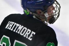 CIAC Ice Hockey; Newtown 4 vs. SH,LI,TH,NO 1 - Photo # (26)