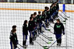 CIAC Ice Hockey; Newtown 4 vs. SH,LI,TH,NO 1 - Photo # (320)