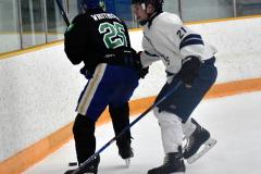 CIAC Ice Hockey; Newtown 4 vs. SH,LI,TH,NO 1 - Photo # (694)