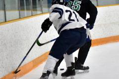 CIAC Ice Hockey; Newtown 4 vs. SH,LI,TH,NO 1 - Photo # (695)