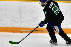 CIAC Ice Hockey; Newtown 4 vs. SH,LI,TH,NO 1 - Photo # (7)