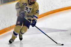 CIACT D3 Ice Hockey; #8 Newtown 7 vs. #9 Wilton 2 - Photo # 062