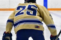 CIACT D3 Ice Hockey; #8 Newtown 7 vs. #9 Wilton 2 - Photo # 156