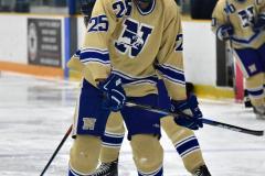 CIACT D3 Ice Hockey; #8 Newtown 7 vs. #9 Wilton 2 - Photo # 232