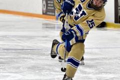 CIACT D3 Ice Hockey; #8 Newtown 7 vs. #9 Wilton 2 - Photo # 235