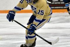 CIACT D3 Ice Hockey; #8 Newtown 7 vs. #9 Wilton 2 - Photo # 258