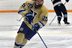 CIACT D3 Ice Hockey; #8 Newtown 7 vs. #9 Wilton 2 - Photo # 260