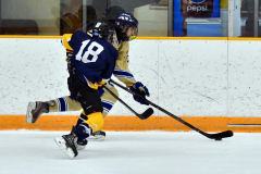 CIAC Ice Hockey; Focused on Newtown 7 vs. Mt. Everett 1 - Photo 583