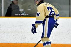 CIAC Ice Hockey; Newtown 2 vs. Daniel Hand 6 - Photo # 060