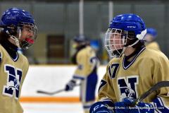 CIAC Ice Hockey; Newtown 2 vs. Daniel Hand 6 - Photo # 1680