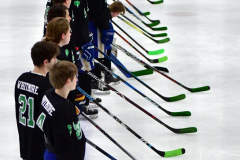 CIAC Ice Hockey; Newtown 4 vs. SH,LI,TH,NO 1 - Photo # (276)