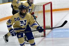 CIACT D3 Ice Hockey; #8 Newtown 7 vs. #9 Wilton 2 - Photo # 019