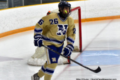 CIACT D3 Ice Hockey; #8 Newtown 7 vs. #9 Wilton 2 - Photo # 046