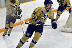 CIACT D3 Ice Hockey; #8 Newtown 7 vs. #9 Wilton 2 - Photo # 064