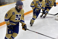 CIACT D3 Ice Hockey; #8 Newtown 7 vs. #9 Wilton 2 - Photo # 066