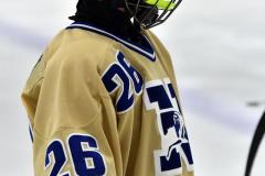CIACT D3 Ice Hockey; #8 Newtown 7 vs. #9 Wilton 2 - Photo # 1604